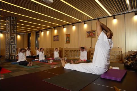 Сатянанда йога – практики, техники и асани